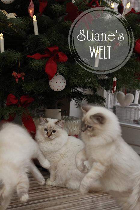 Stianes_Welt_Weihnachtsdeko_10